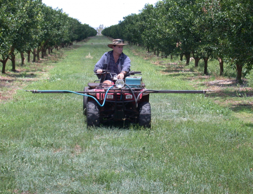 Queensland Fruit Fly Growers Update (May 2021)